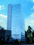 Office space in Insurgentes Sur, 800 8th Floor